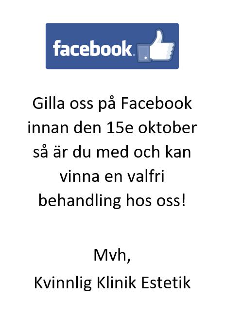 Skärmbild (13)